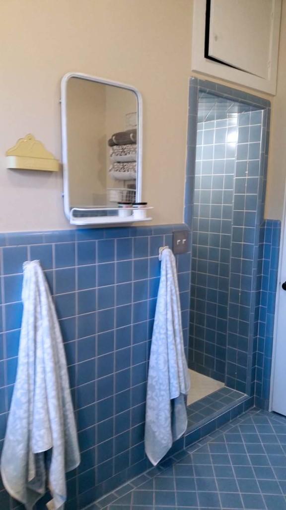 Blue Bath shower