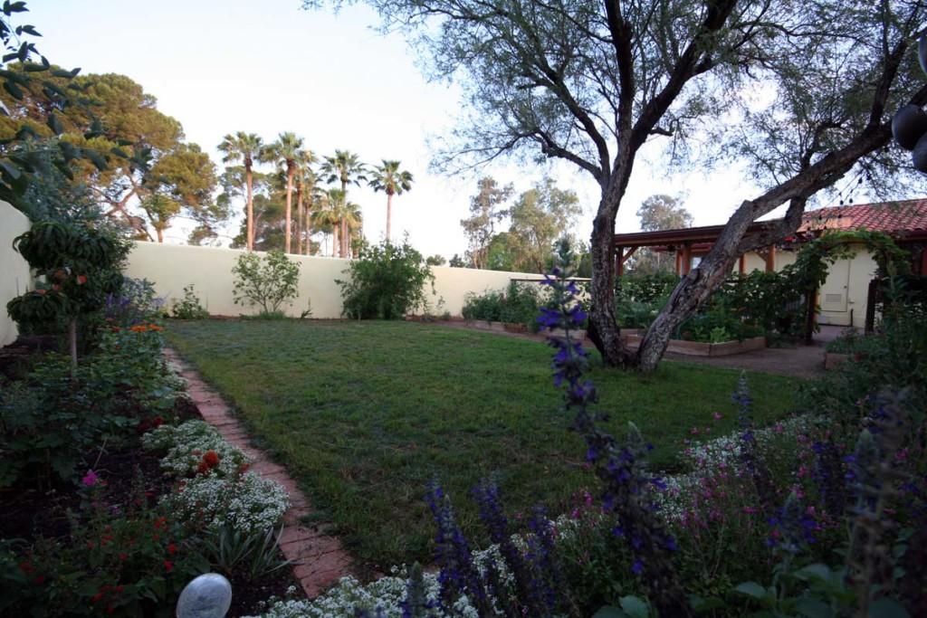 back yard west 3